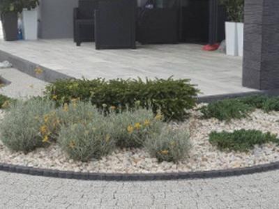 Rośliny przed tarasem 6